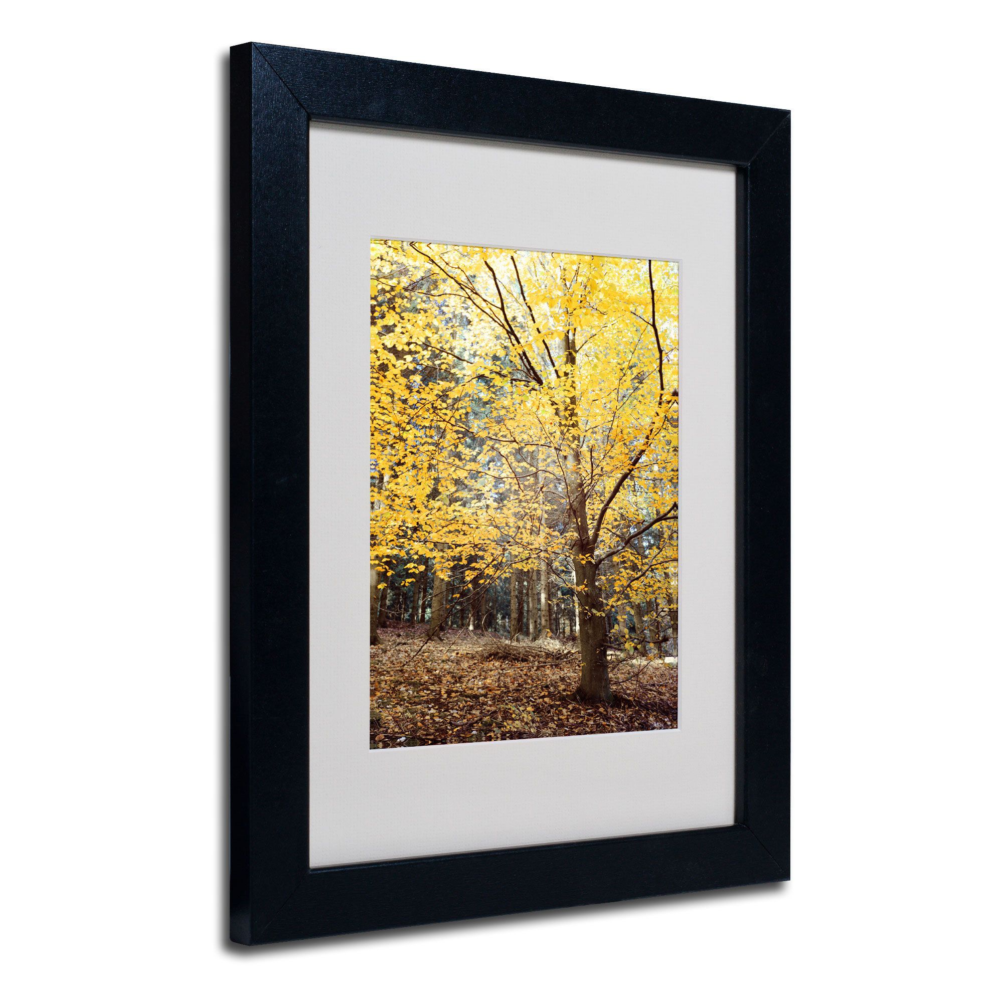 Philippe Sainte-Laudy \'Yellow Fall\' White Matte, Framed Wall Art ...