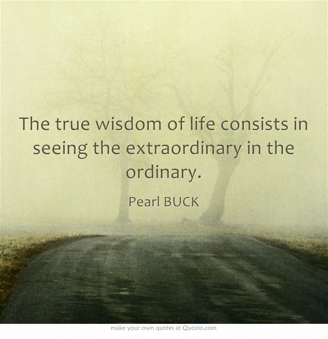 The True Wisdom Of Life Consists In Seeing The Extraordinary In The