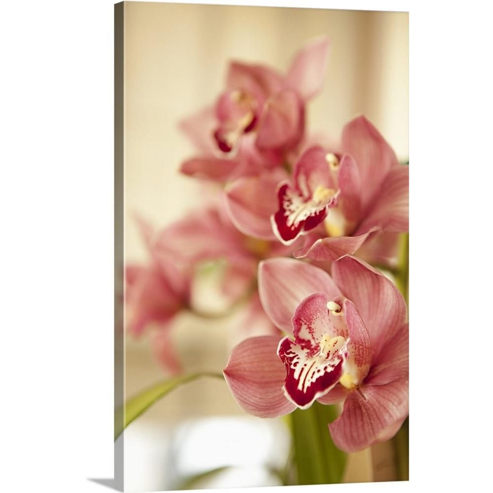 Greatbigcanvas Pink Orchid I By Karyn Millet Canvas Wall Art