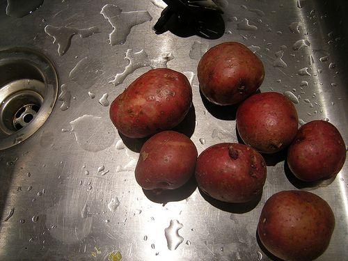 Grow Potatoes Organically II