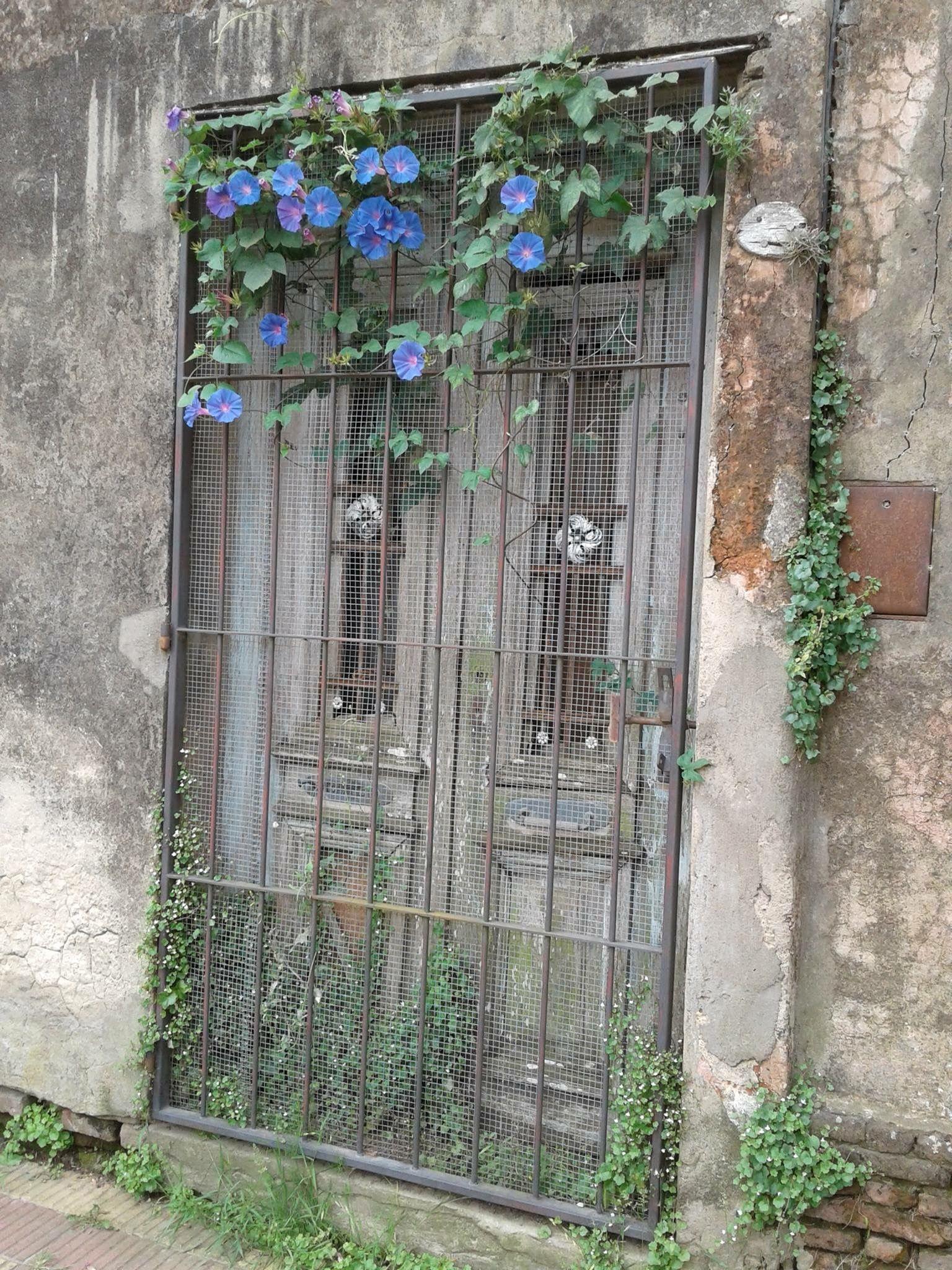 Pin Von Xela Ren Auf Garten Gate Und Garden