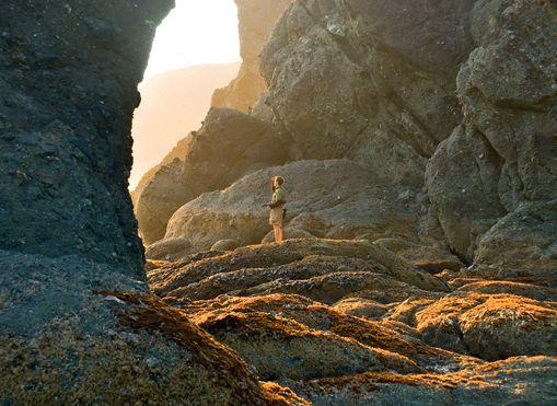 Trails for Shi Shi Beach, Ozette Triangle, Grand Valley, and Bogachiel Peak.