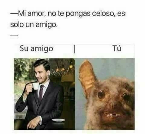 Mi Amor No Te Pongas Celoso Es Solo Un Amigo Humor Memes Funny Divertido Memes Divertidos Memes Memes Graciosos