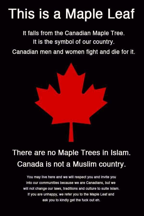 Maple Leaf Oh Canada Pinterest Truths Politics And Muslim