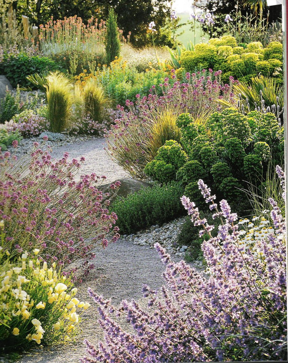 Pin By Catherine Skoor On Landscape Design Landscape Design Natural Landscaping Natural Garden