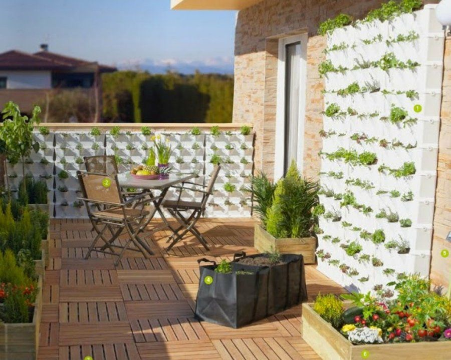 Qu plantas elegir para crear un jard n vertical - Plantas para jardin vertical ...