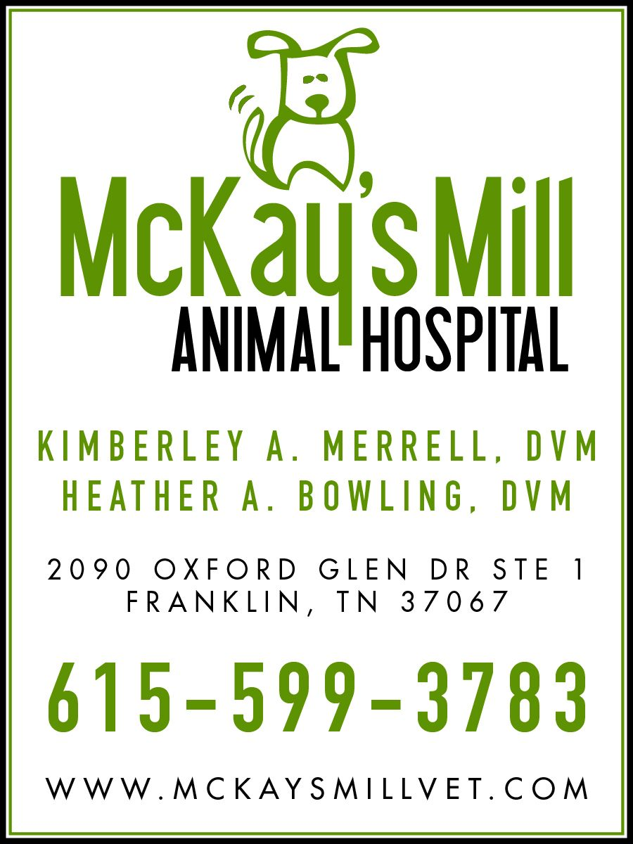 19+ Animal hospital of marion ideas in 2021