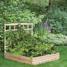 Small Vegetable Garden Raised garden bed w/ trellis Vegetable Garden Raised garden bed w/ trellisRaised garden bed w/ trellis