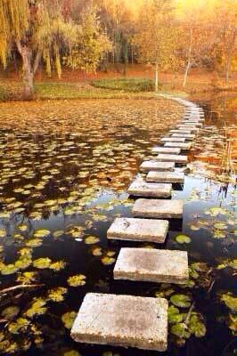 stepping stones going across water to the land & trees