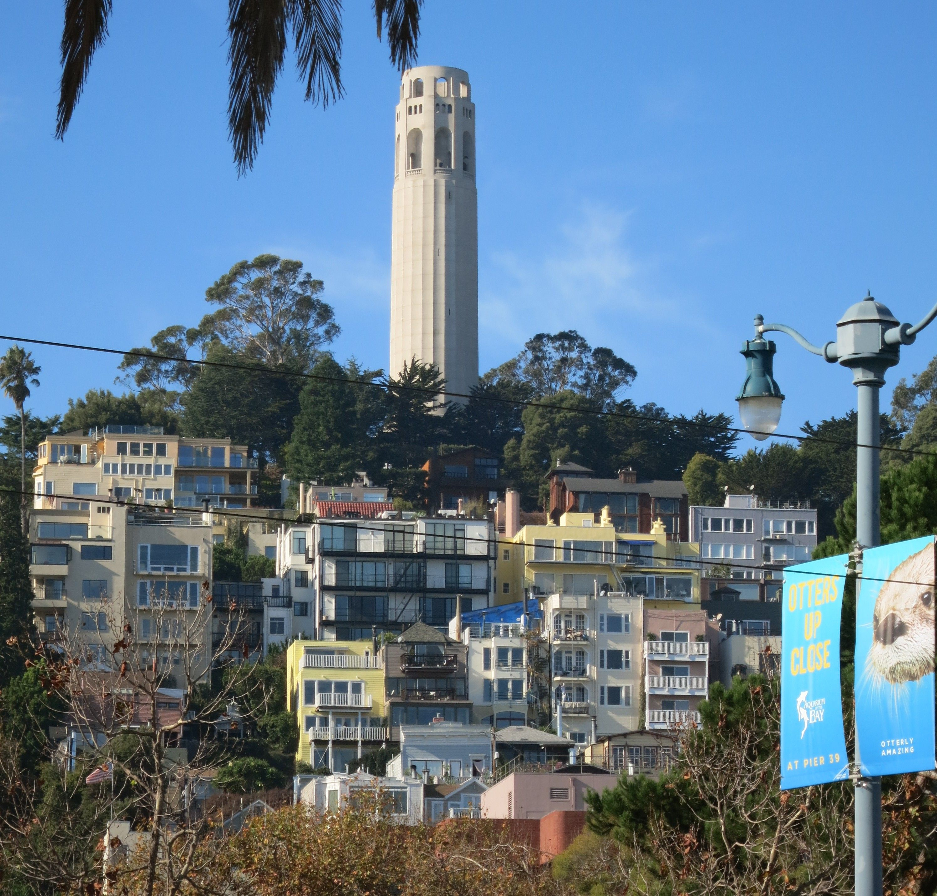 An Unmissable Walk In San Francisco