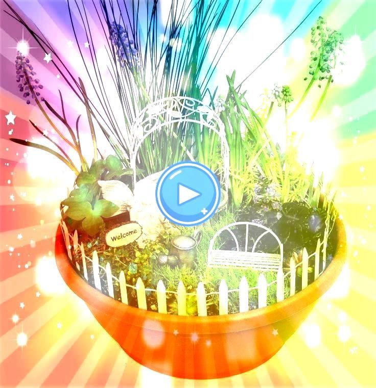Qualitätsprodukte für Haus und Garten  Mini Enchanted Gardens Fairy Ga   My Green Thumb  Echo Valley  Qualitätsprodukte für Haus und Garten  Mini Enc...