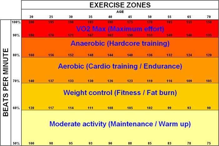 burning fat efficiently is best achieved with a low fat low - rate chart