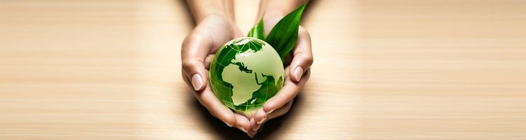 mission statements examples for organic skin care - Google Search - fresh 6 personal mission statement example