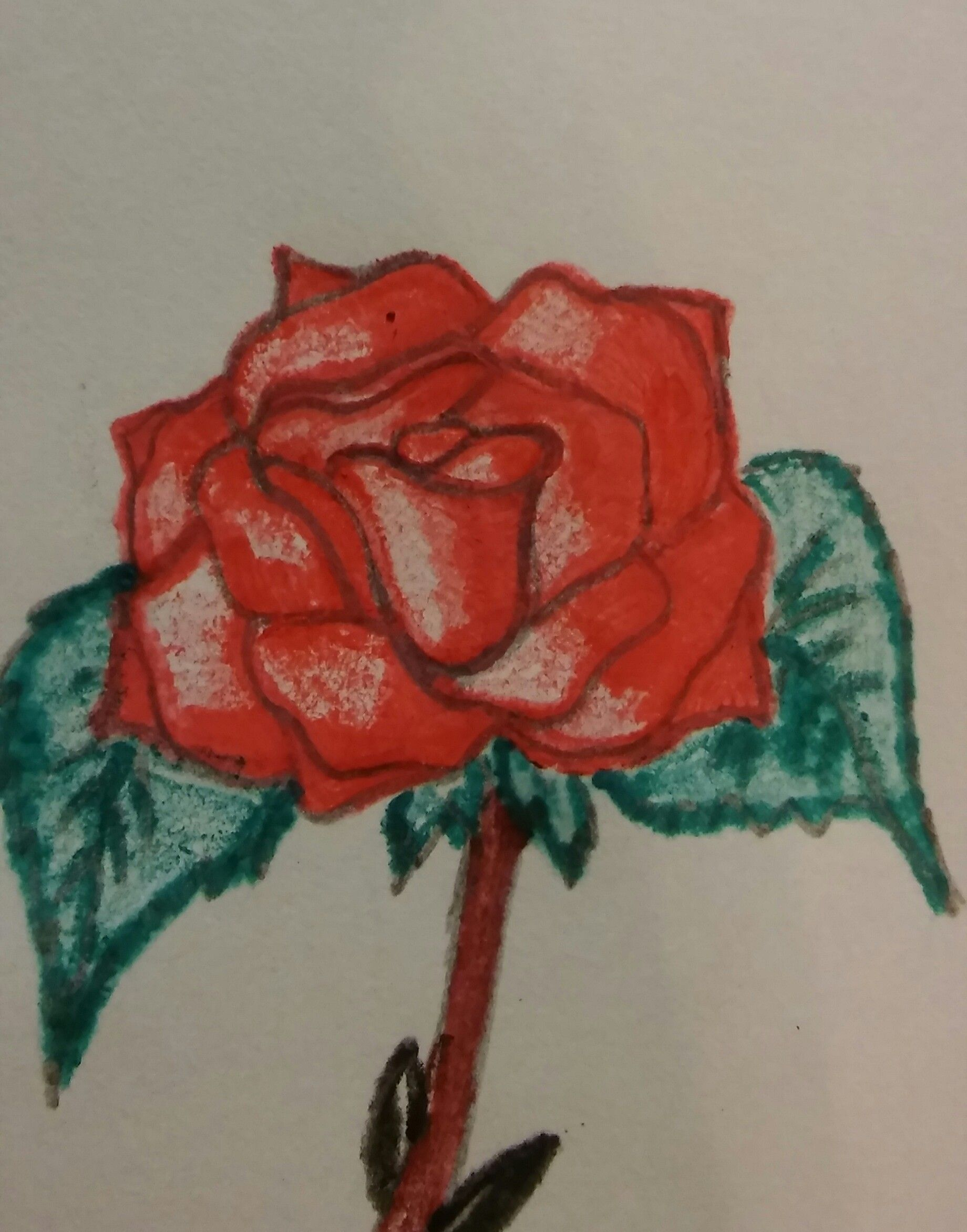Not my best rose drawing...