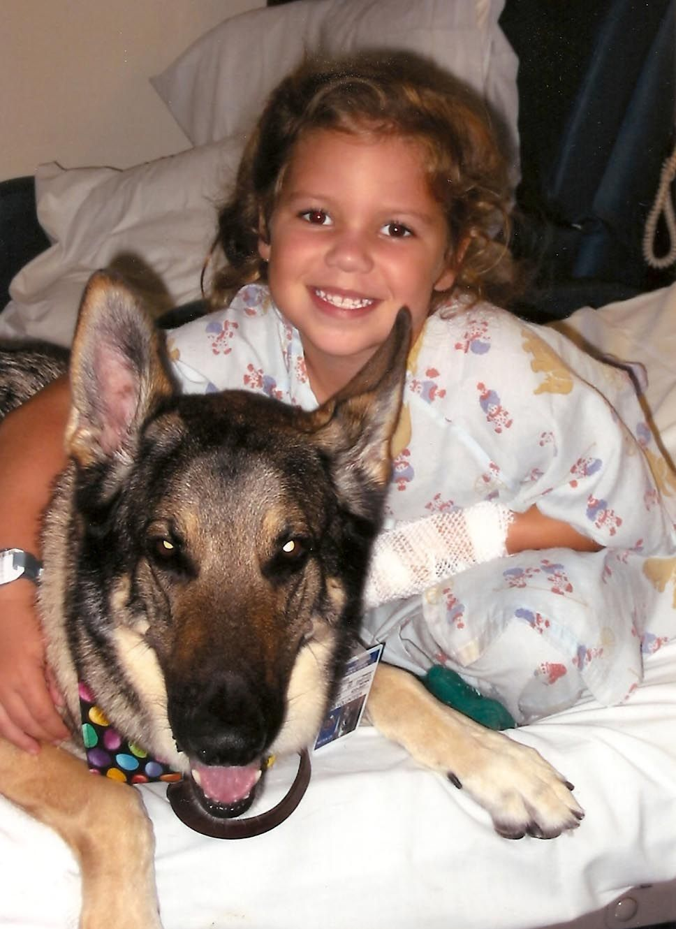 """From Therapy Dogs International """"Having therapy dogs in"""