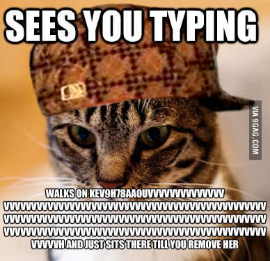 Masteringtyping Com Were You Typing Best Funny Pictures Funny Type