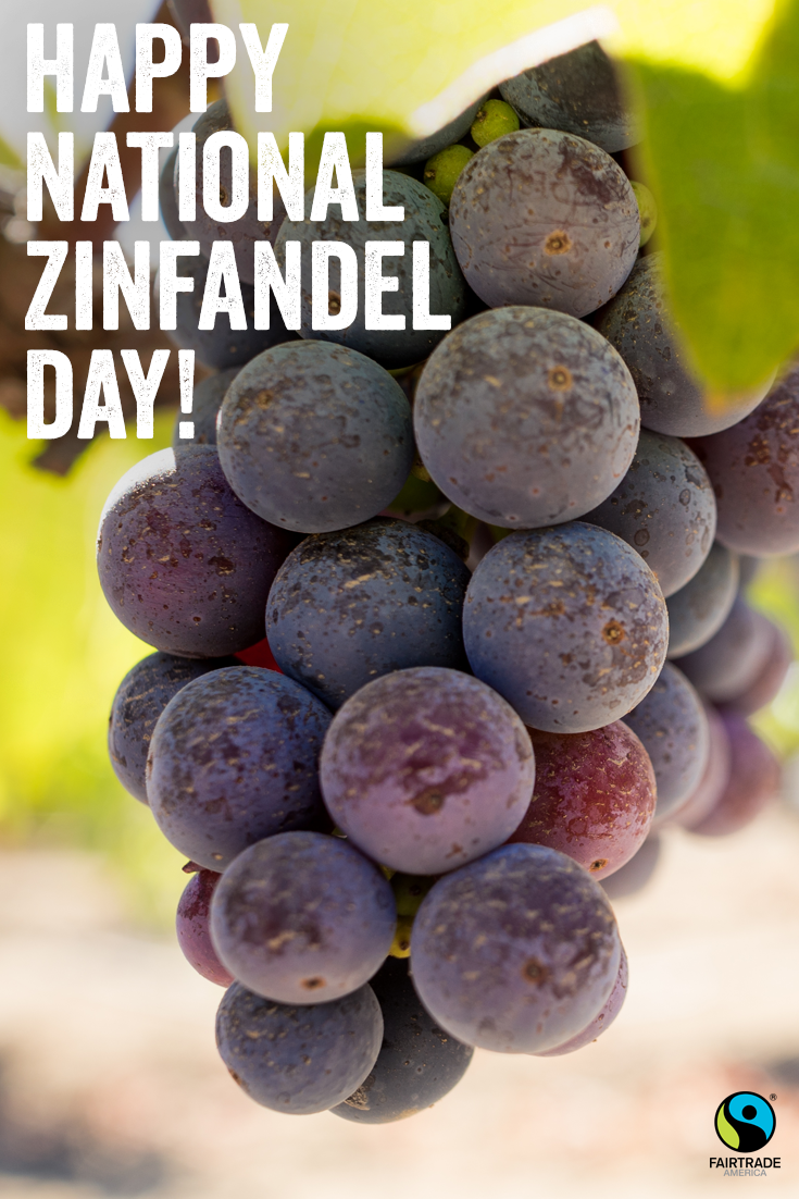 Happy #NationalZinfandelDay!   Click the pin for a list of Fairtrade certified #wine 🍷