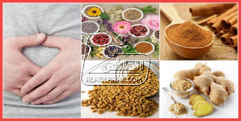 تنظيف الرحم باستخدام وصفات ومشروبات الاعشاب الطبيعية Food Animals Dog Food Recipes Food