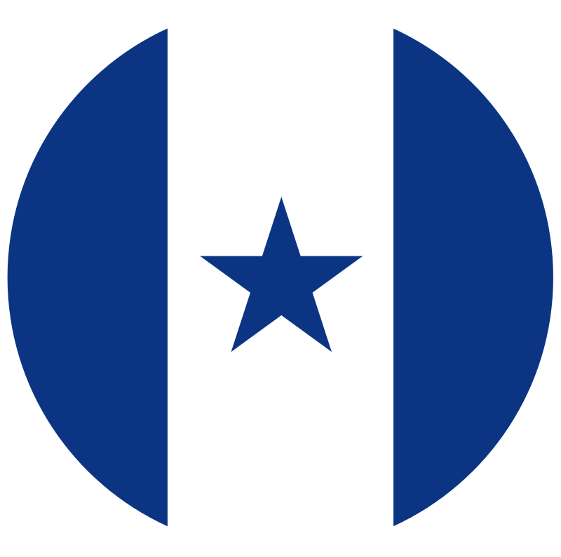 800px Honduran Air Force Insignia Svg Png 800 793 Military Insignia Nose Art Aircraft Design