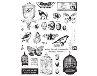 7 Gypsies - Conservatory Collection - Clear Acrylic Stamps at Scrapbook.com $11.95