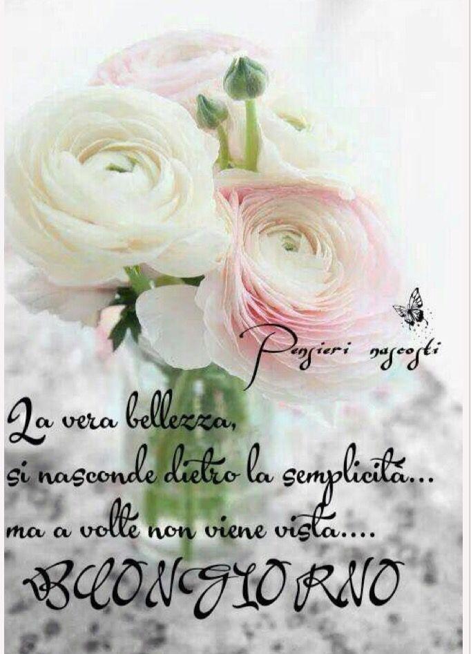 Buongiorno buongiorno amici buongiorno buonanotte for Immagini belle buongiorno amici