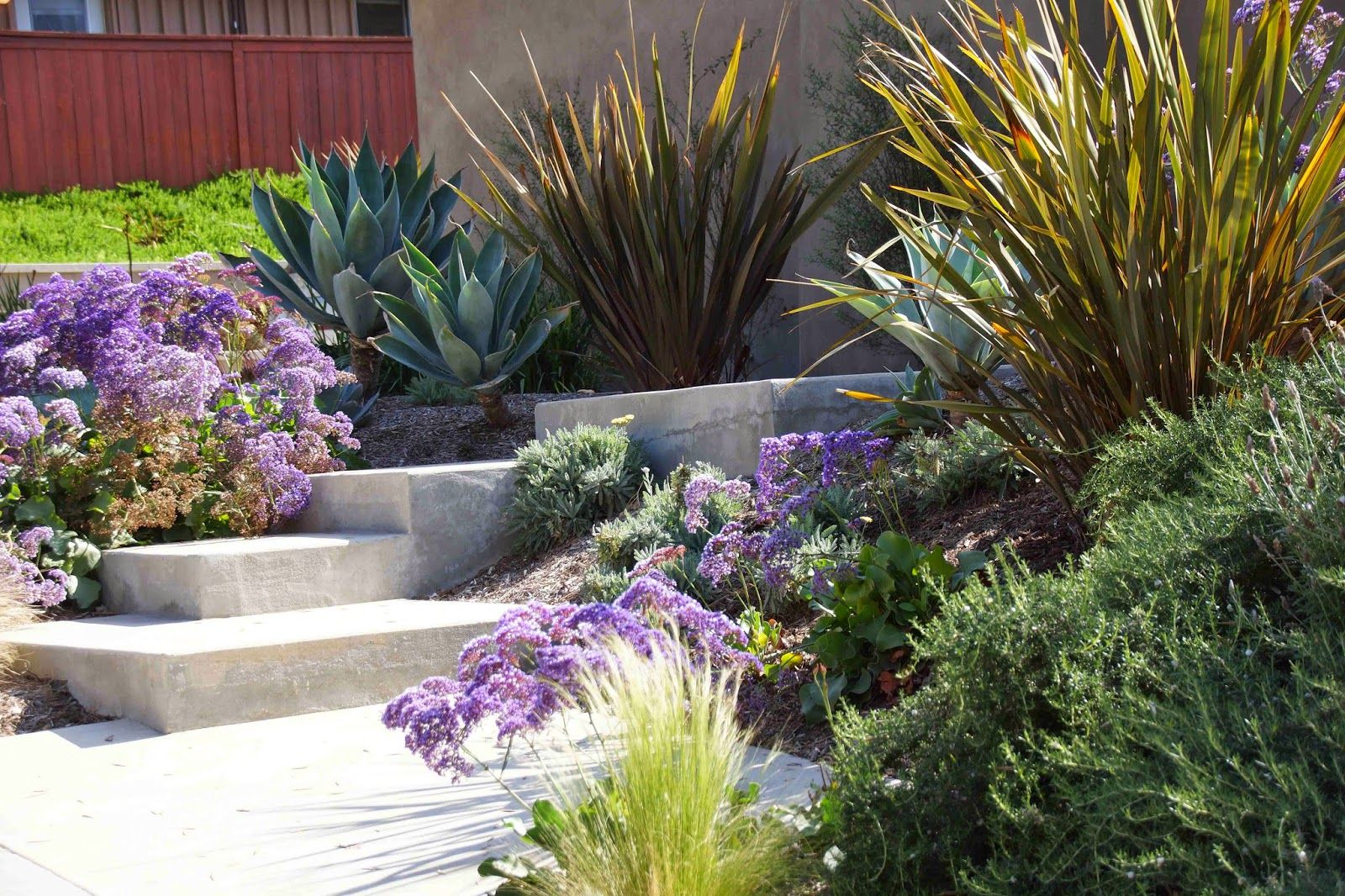 Southern CA water-saving front garden. At Piece of Eden: More Lawnless Front Yards