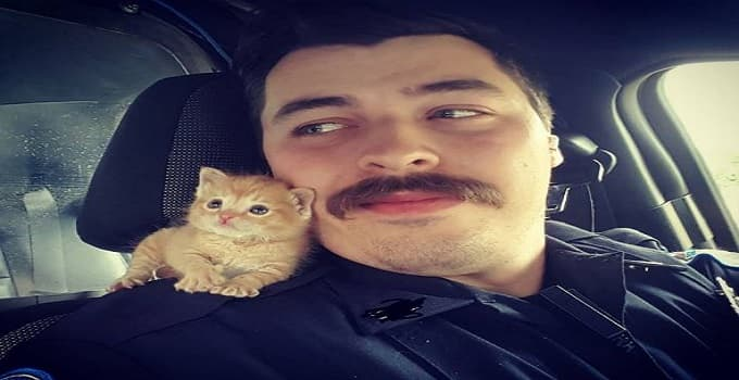 Police Officer Rescues Ginger Kitten and Now They Are Best Buds! #gingerkitten