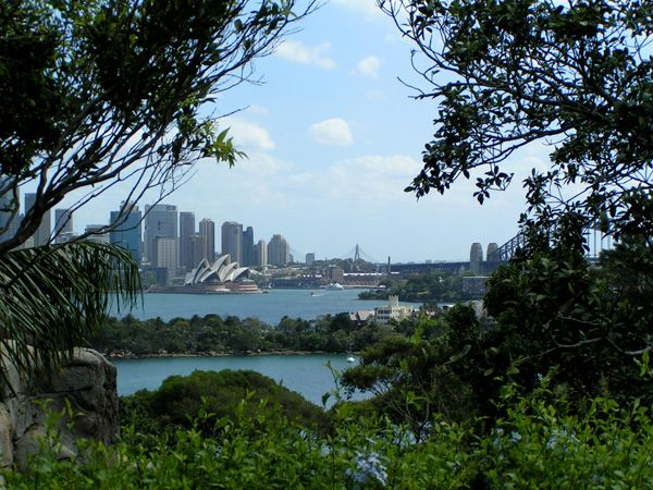 View from Taronga Zoo in Sydney