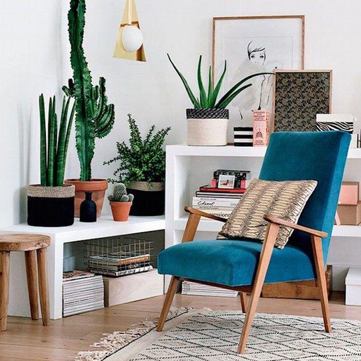 Tenha sempre mais plantas em casa! #plantas #verde #interior - decoracion de interiores con plantas