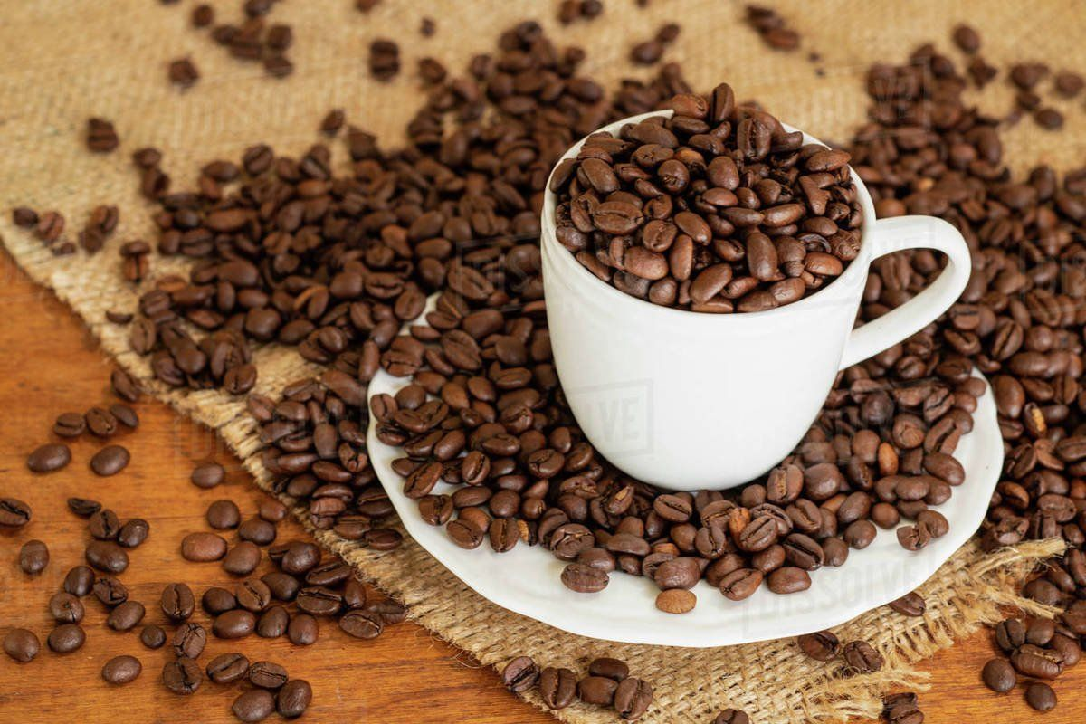 25++ What are coffee beans made of inspirations