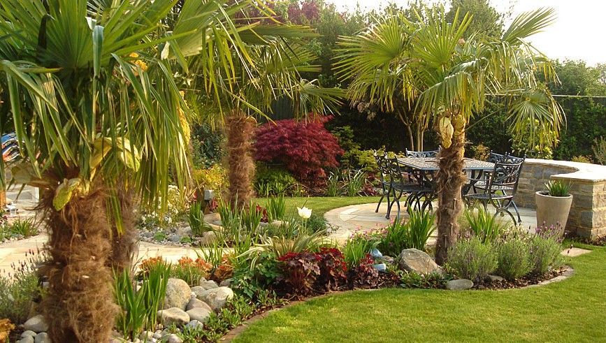 commercial landscaping ideas with palms garden designer specialist in water gardens and construction of - Garden Design Tropical