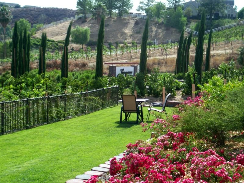 Wine Crawl #1 - Leonesse Winery, Temecula CA | NORTHWEST ARKANSAS ...