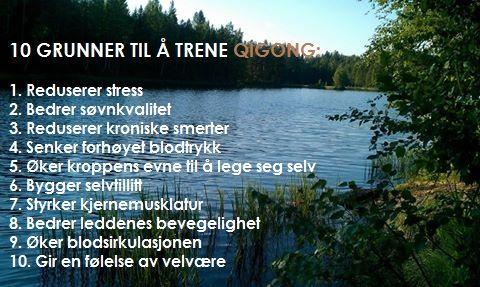 Learn medical qigong in a weekend, in Lørenskog, Norway. Anyu klinikken, Skårersletta 18. Tlf: 40670885 www.anyu.no