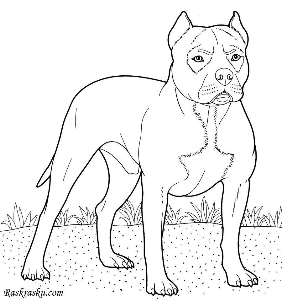 41++ Printable boxer dog coloring pages ideas
