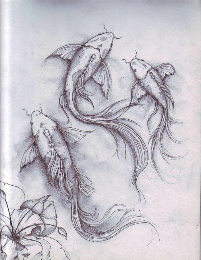 Line Drawing Tattoo London : Fish sketch by dennis adriano at coroflot tattoos