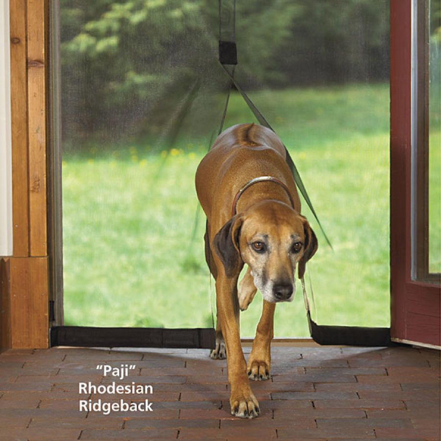 Instant Screen 36x96 Dogs Walk Right Through This Screen And It Automatically Closes Up Behind Them Dog Screen Door Screen Door Protector Pet Door