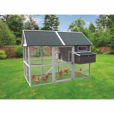 Innovation Pet Big Green Walk In Chicken Coop Pet Chickens Coops Chickens Backyard Walk In Chicken Coop