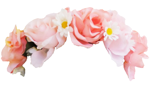 Discover Trending Flower Stickers Flower Crown Drawing Snapchat Flower Crown Transparent Flowers