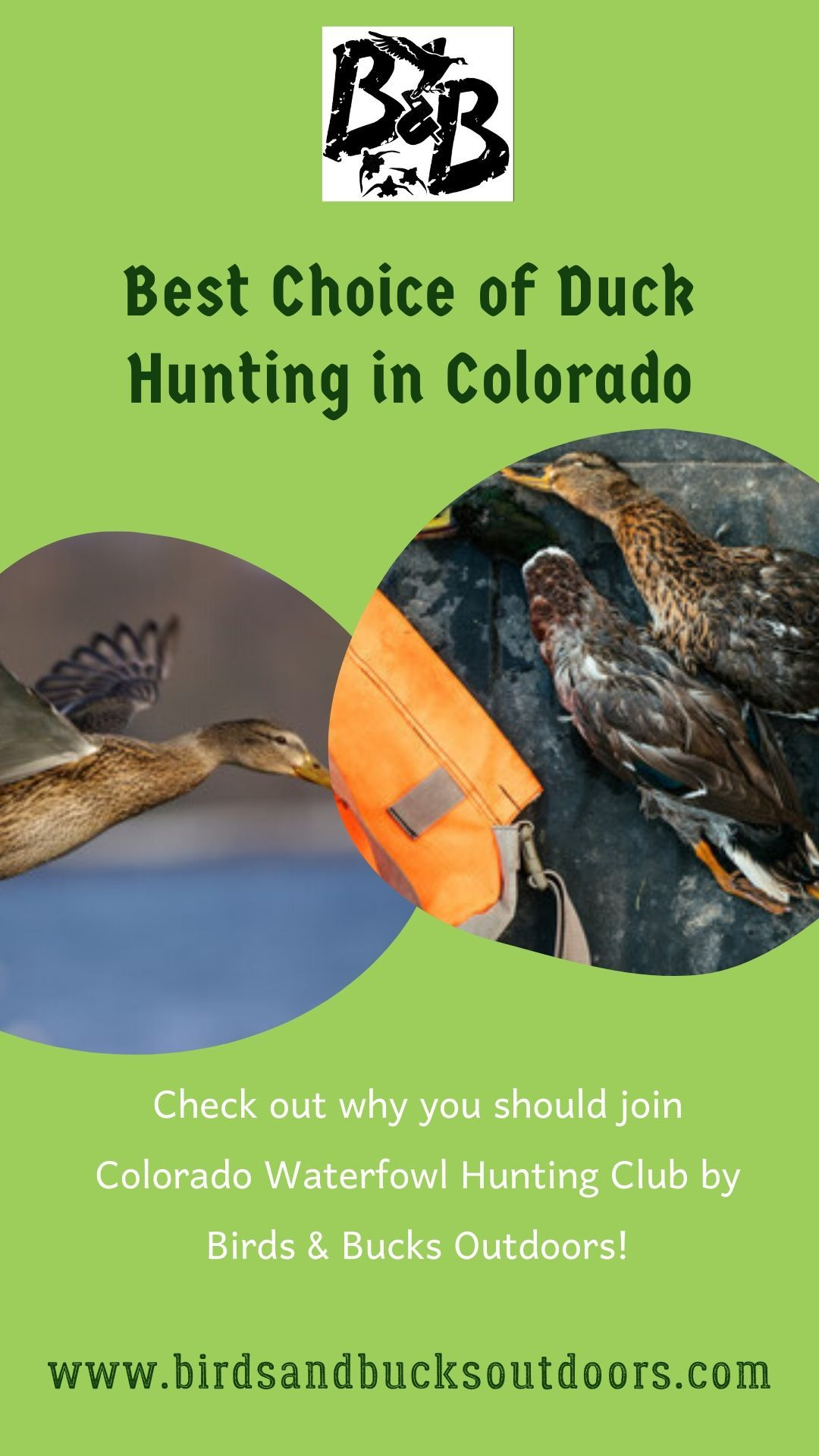 Best choice of duck hunting in colorado in 2020