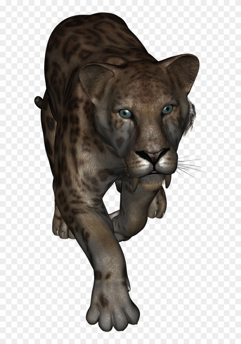 This Is The Sabertooth Tiger From Daz Studio Lion Hd Png Sabertooth Tiger Sabertooth Animals