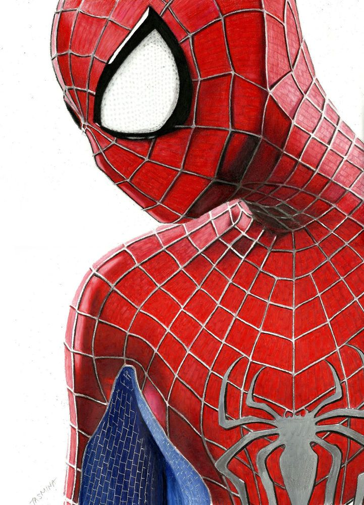 The Amazing Spider Man 2 Colored Pencil Drawing Realism