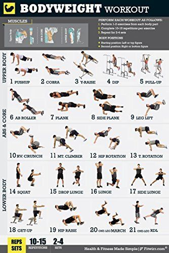 12 X 18 Bodyweight Exercise Poster Total Body Workout Personal Trainer Program For Men Home Gym Workouts Abs Chest