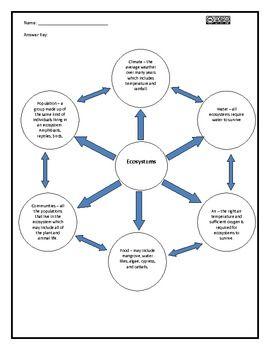 Ecosystems Web Graphic Organizer