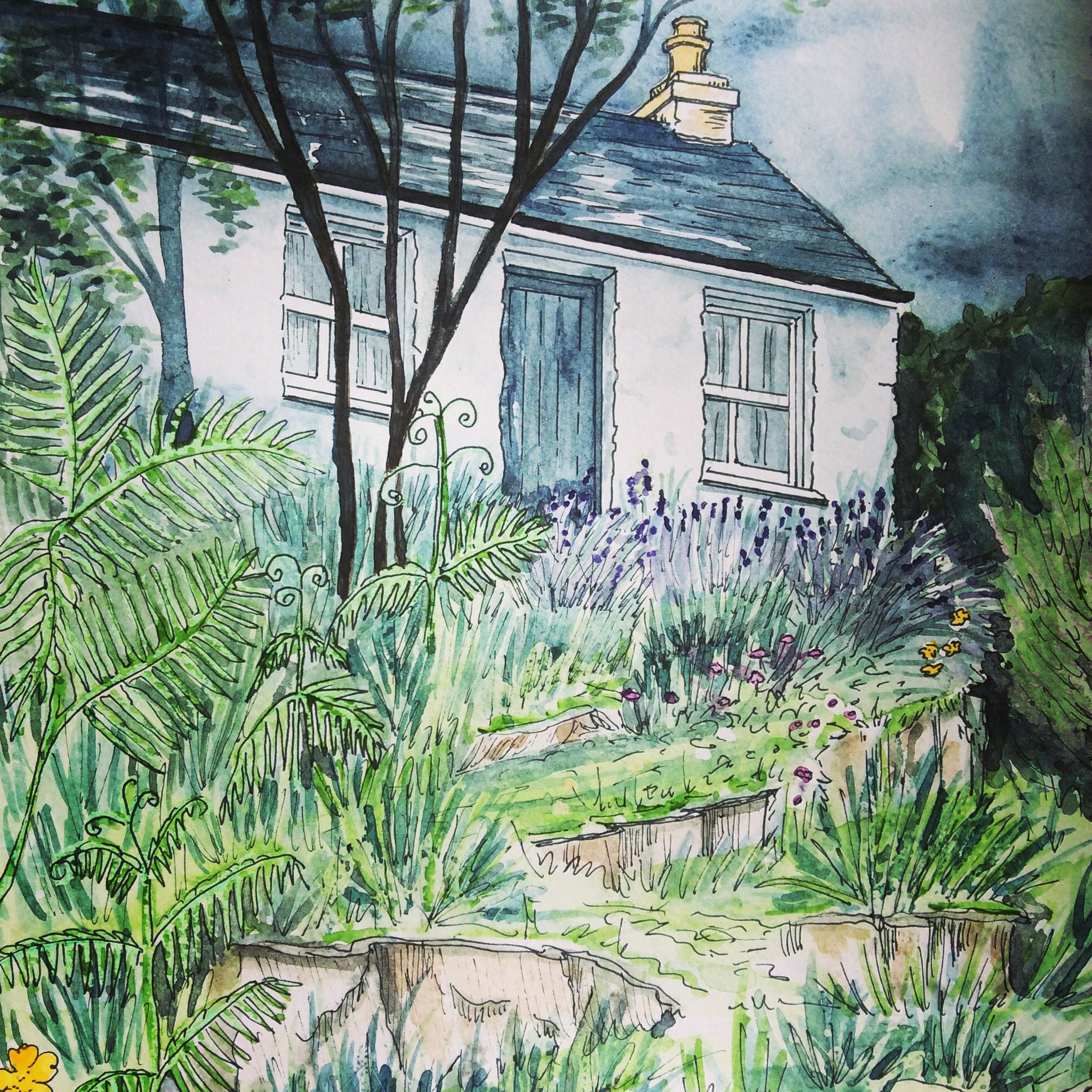 The Croft on Eilean Ban, the island home where Gavin Maxwell lived at the end of his life #watercolours #art #books #Gavin Maxwell
