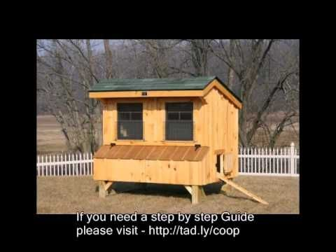 Basic Chicken Coop Concept Guide and