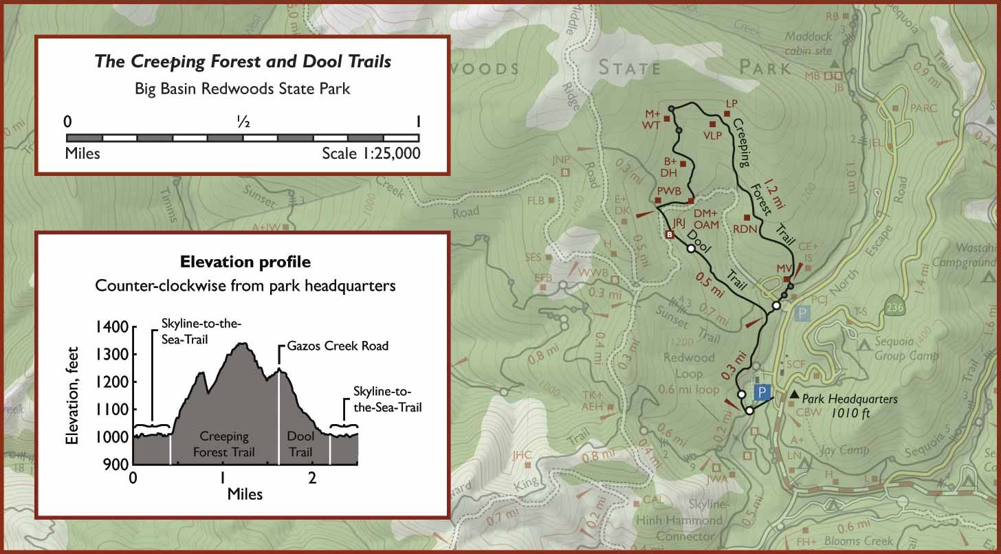 Map of the Creeping Forest and Dool Trails, Big Basin Redwoods State ...