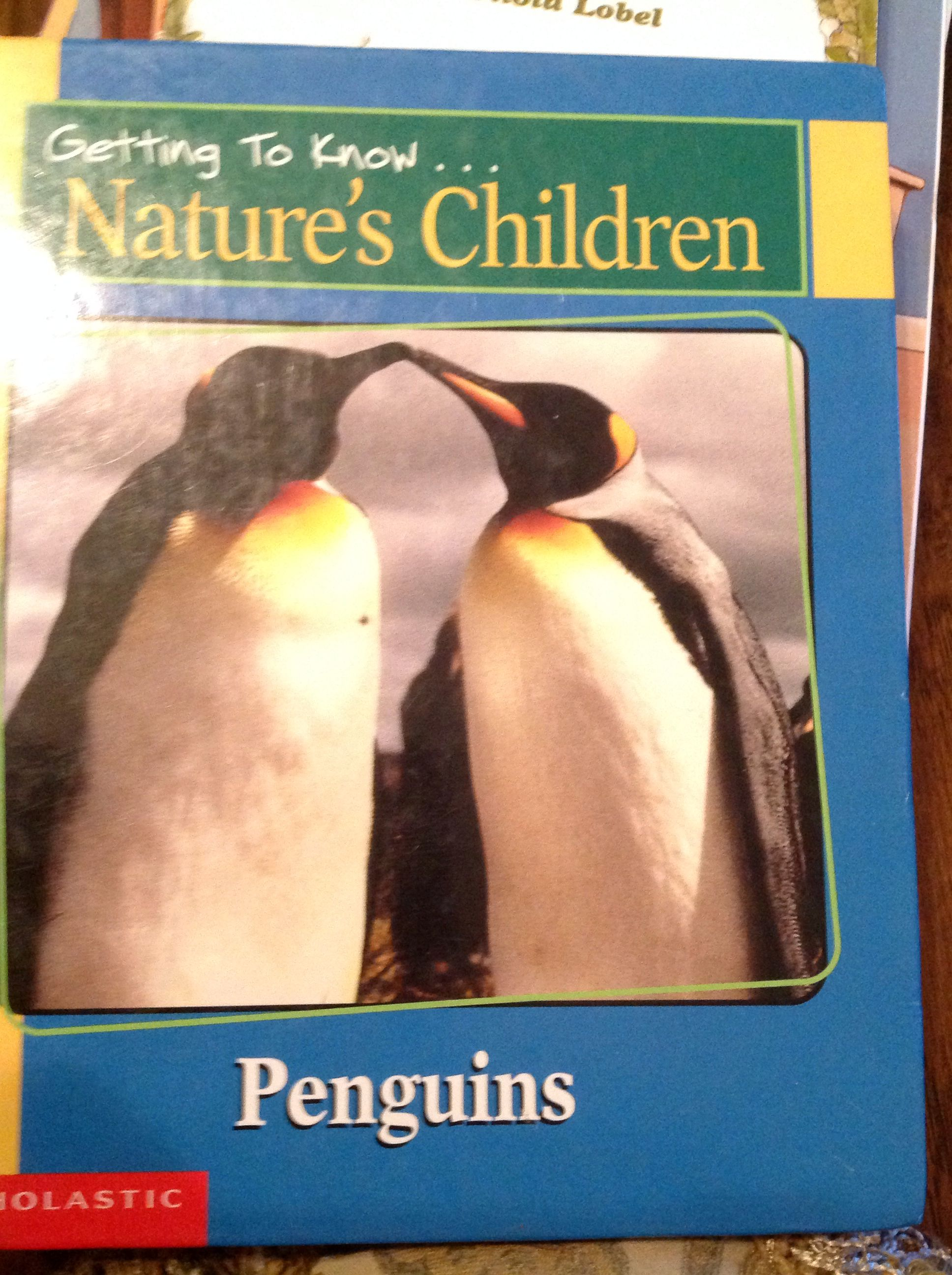 Getting To Know Nature S Children Penguins