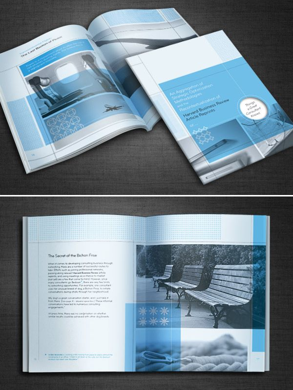 Harvard Business Review Brochure  Design Inspiration