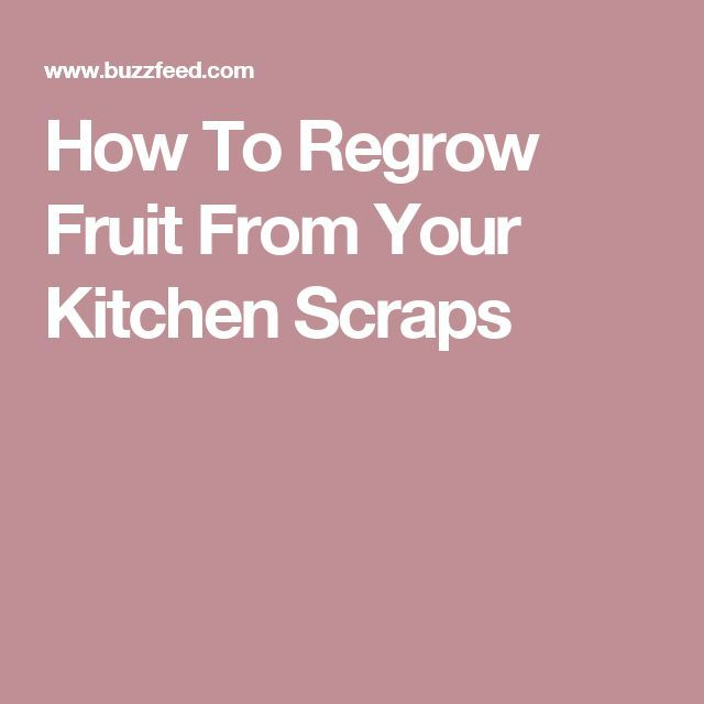 How To Regrow Fruit From Your Kitchen Scraps