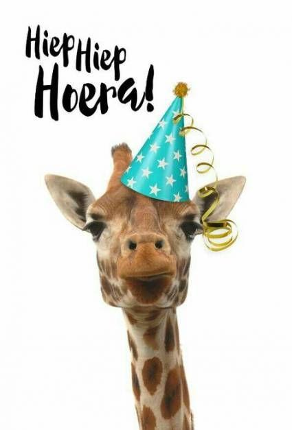 Happy Birthday Funny Kids : happy, birthday, funny, Trendy, Birthday, Wishes, Funny, Children, Happy, Kids,, Friendship